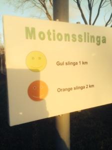 Motionsslingor