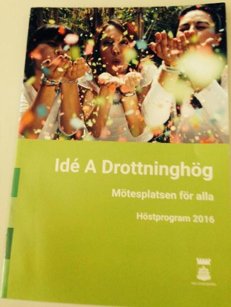 ideaprogramblad